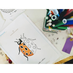 Cocai Coloring Cards:...